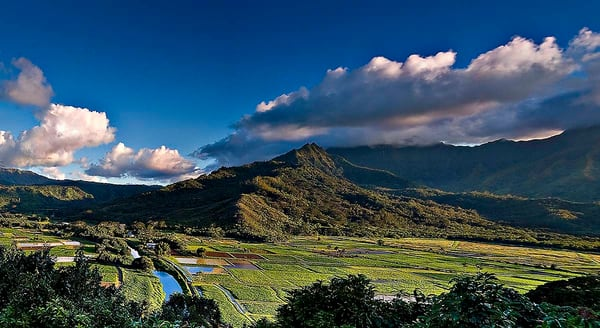 Scenic Hanalei River Valley | Kauai Fine Art Photography, Hawaii