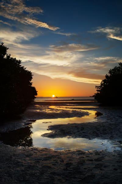 8274 Dog Beach Sunset Art | Cunningham Gallery