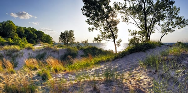 0339 Indiana Dunes Art | Cunningham Gallery