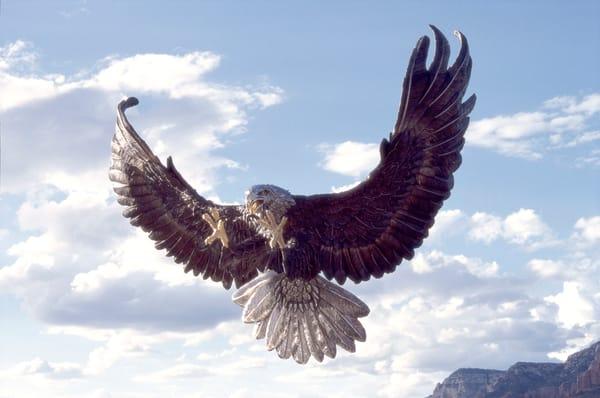 Chromium Eagle