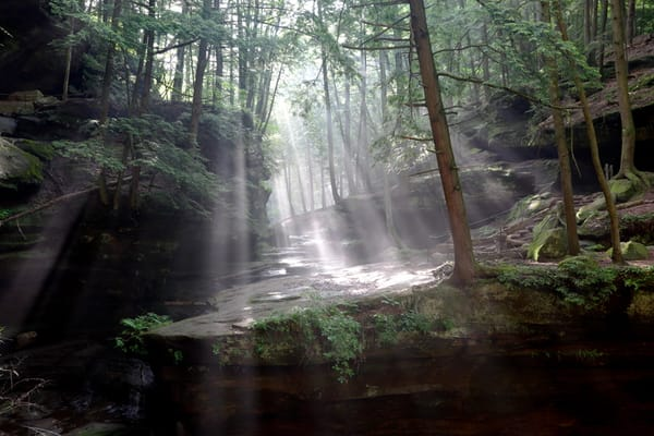 2885 Sunbeams Hocking Hills, Ohio Photography Art | Cunningham Gallery