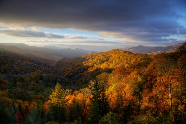 7294 5 6 Fall Mtn Near Clingmans Photography Art | Cunningham Gallery