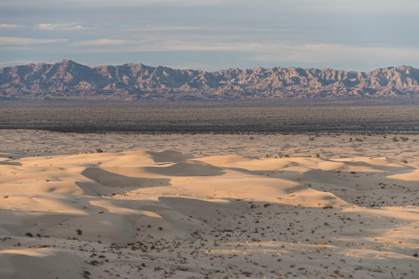 Algodones Dunes, Glamis, California; North Algodones Dunes Wilderness, sand dunes and mountains in the distance in late afternoon sunlight
