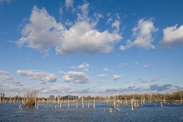Columbia Ranch, Brazoria County, Damon, Texas; Lake Glen on the Simkin property