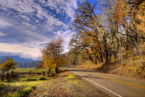 Oregon Country Road