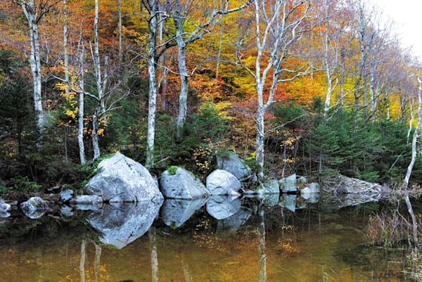 1095 Franconia Notch Art | Cunningham Gallery