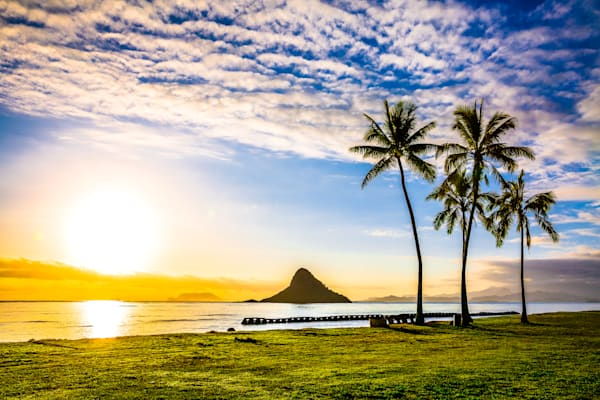 Hawaii Photography  |  China Daze by Shane Myers