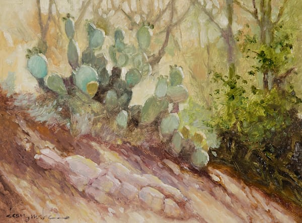 Color Of Cactus Art | Fine Art New Mexico