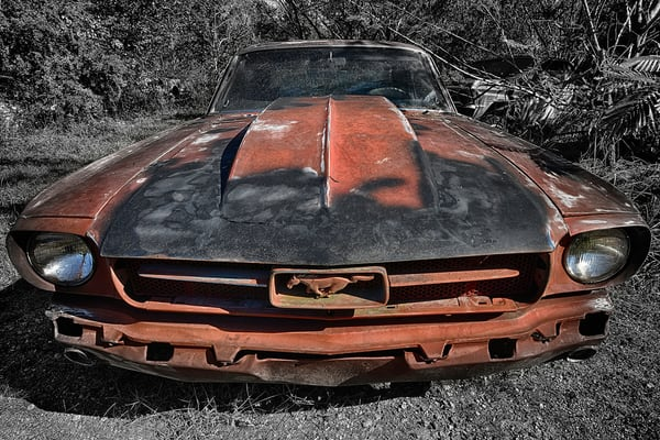 Mustang Photography Art | Robert Jones Photography