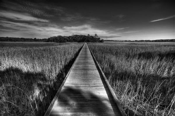 Edisto Boardwalk