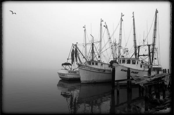Shrimp Boats Photography Art | Robert Jones Photography