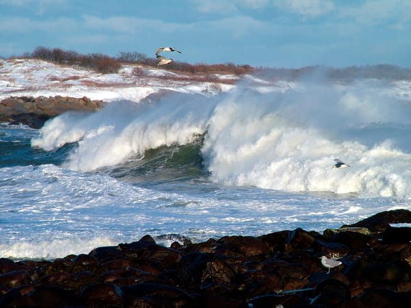 big wave winter storm gap cove gulls seascape rockport
