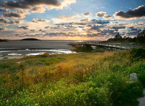 good harbor beach flowers boardwalk sunrise gloucester