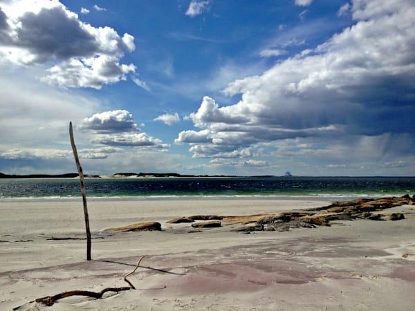 coffin's wingaersheek beach seascape gloucester driftwood