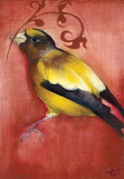 Bird Study VI