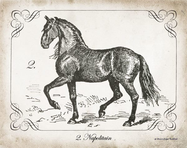Farm Horse II