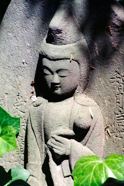 Buddha With Ivy