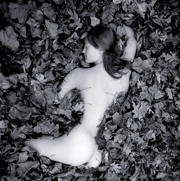 Girl In Leaves 2