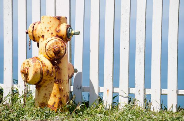 Fire Hydrant, Point Reyes National Seashore, California