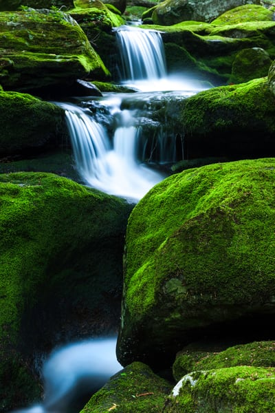 Nature's finest decor! Luminous verdant moss covered boulders surround picturesque waterfalls