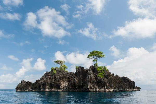 Two Tree Island, Raja Ampat, Indonesia