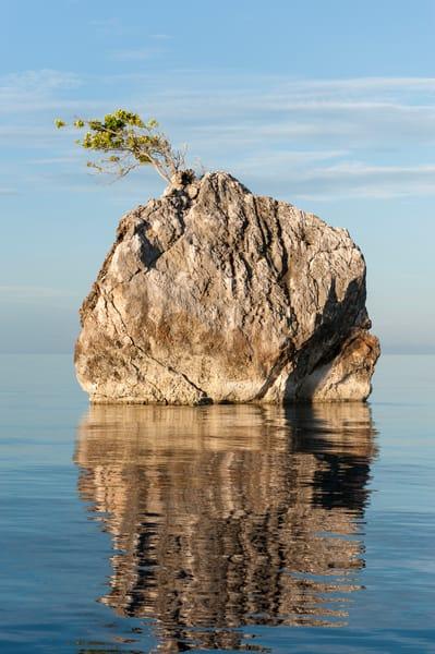 Rock Tree Island Reflection, Raja Ampat, Indonesia