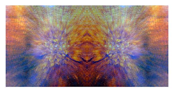 Spirit Guide Art | photographicsart