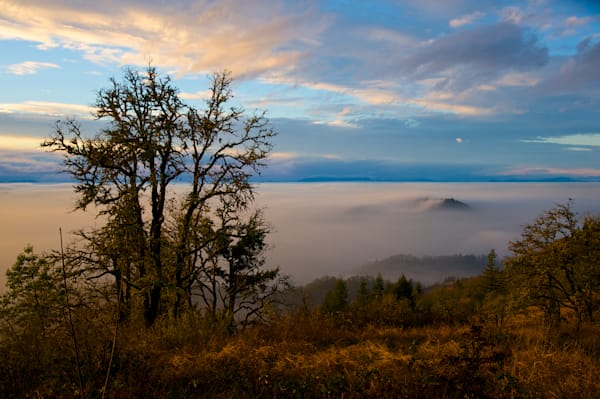 View from the top of Mt Pisgah from above the clouds.