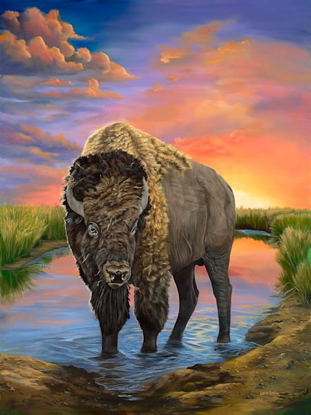 American Bison Art | Fine Art New Mexico