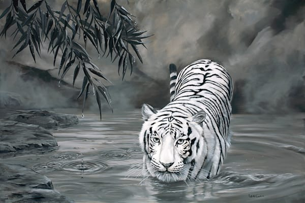 Torrid The Tiger Art | Fine Art New Mexico