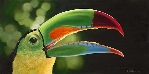 Toucan Art | Fine Art New Mexico