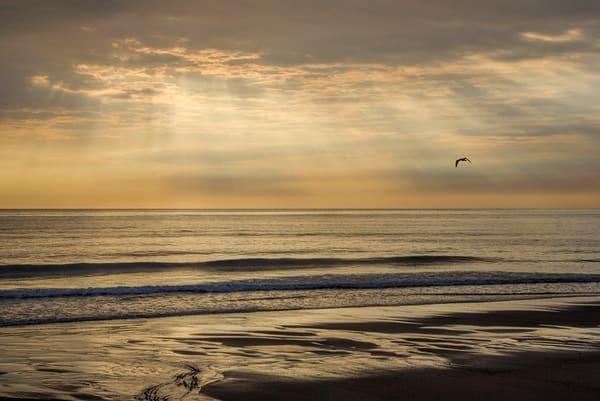 Cape Morning