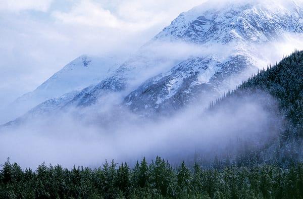 Misty Heights