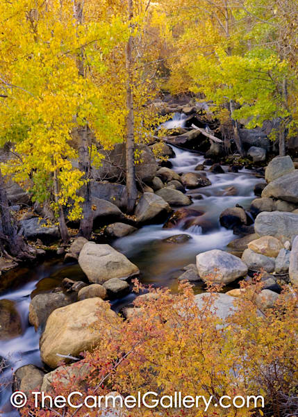 Bishop Creek in Autumn