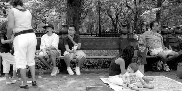 Central Park 06