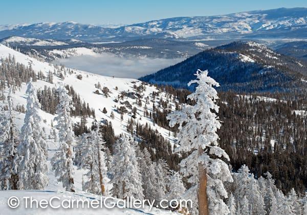 Fresh Snow, Donner Summit