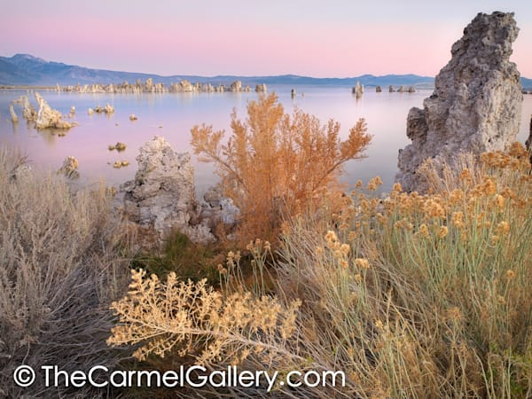 Autumn Morning, Mono Lake