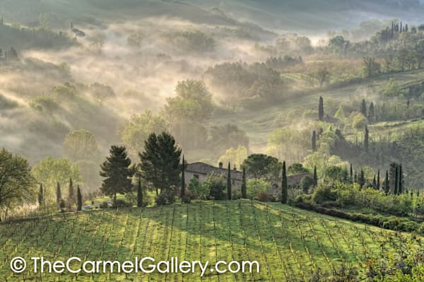 Morning Mist, Tuscany