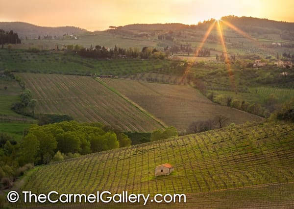 Tuscan Sunset I