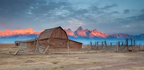 Mormon Row Sunrise II