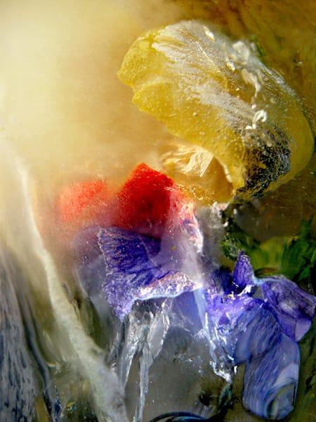 Icescape Unfurl Art | Fine Art New Mexico