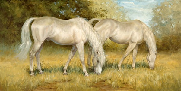 Cream Colored Ponies