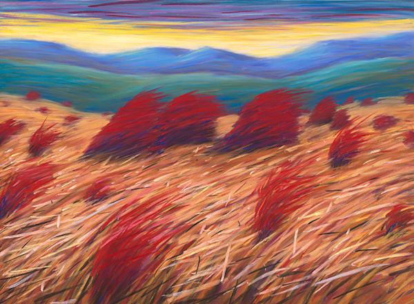 Crazy Breeze Art | Fine Art New Mexico
