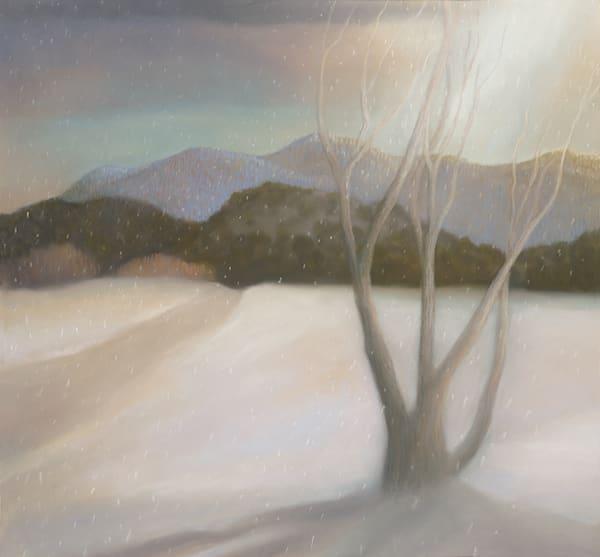 Snow Dusting Art | Fine Art New Mexico