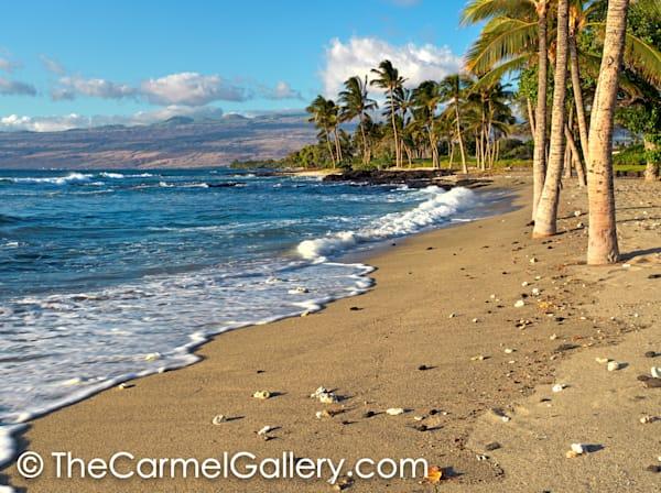 Gold Coast, Hawaii