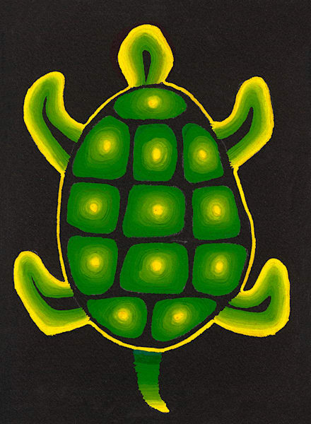 Turtle Art | Fine Art New Mexico