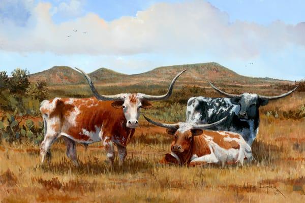 Horns of Texas