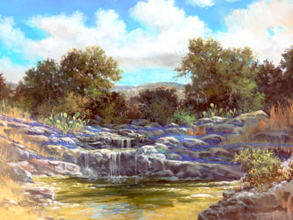 Bluebonnet Springs