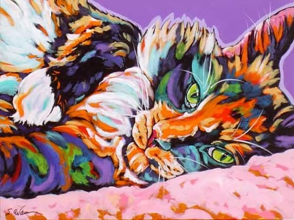 Calico Dreams