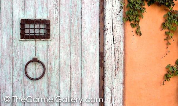 Old Door with Ivy